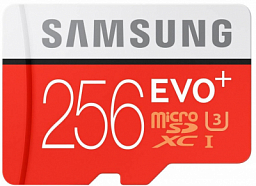 Samsung MSD 10cl Evo Plus UHS-1 w/a 256GB (MB-MC256DA/AM)