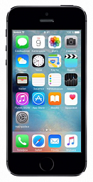 Apple IPhone 5S (16GB, Space Grey)