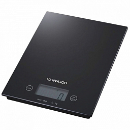 Kenwood DS400